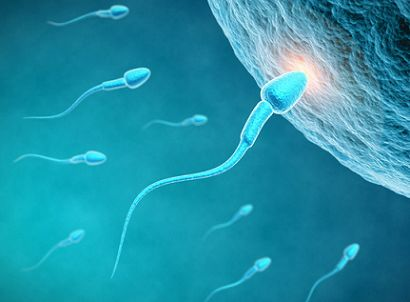 精液常规检查的项目有哪些